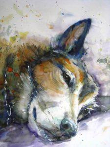 Hond Ilona 2-2015